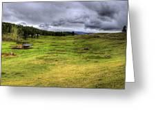 Montana Breeding Ground Greeting Card