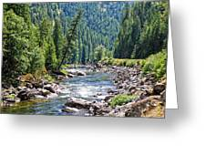 Montana River And Trees Greeting Card