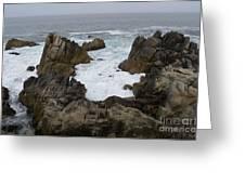 Monterey Bay - California Greeting Card