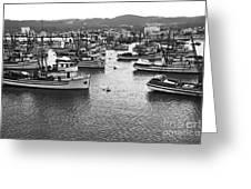 Monterey Harbor Full Of Purse-seiner Fishing Boats California 1945 Greeting Card