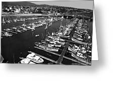 Monterey Marina With Fishing Boats In Slips Sept. 4 1961  Greeting Card