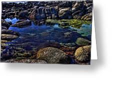 Monterey Pool Greeting Card