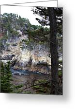 Monterey Rock Pines And Cypress Greeting Card