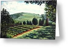 Monticello Vegetable Garden Greeting Card