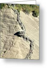 Montmorency Falls Stairway Greeting Card