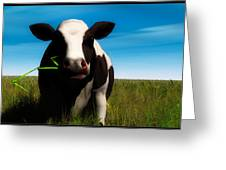 Moo... Greeting Card