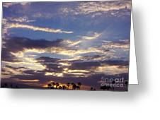 Moody Desert Sunrise Greeting Card