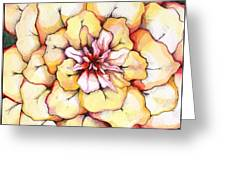 Moon Flower Out Of The Bloomers And Onto The Bloom Greeting Card
