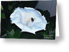 Moon Flower Greeting Card