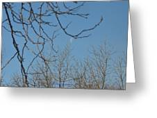 Moon On Treetop Greeting Card