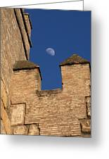 Moon Over Alcazar Greeting Card