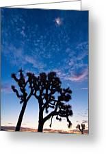 Moon Over Joshua - Joshua Trees During Sunrise In Joshua Tree National Park. Greeting Card