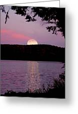 Moon Over Parks Pond Greeting Card