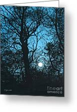 Moon Over Pittsburgh Greeting Card