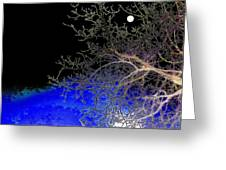Moon Over Sapphire Pond Greeting Card