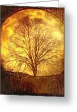 Moon Tree Greeting Card