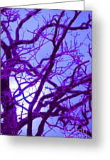 Moon Tree Purple Greeting Card by First Star Art