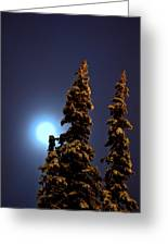 Moonlight In Lapland Greeting Card