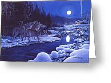 Moonlight Visitors Greeting Card