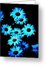 Moonlit Daisies Greeting Card