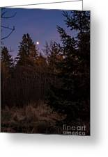 Moonlit Evening Greeting Card