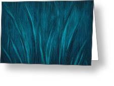 Moonlit Grass Greeting Card