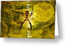 Moonlit Web Greeting Card