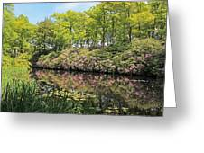 Moore State Park Water Reflections Greeting Card