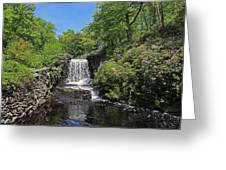 Moore State Park Waterfall 3 Greeting Card
