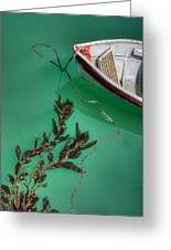 Moored Boat And Kelp Greeting Card