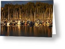 Moored Sailboats Greeting Card