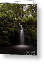 Moorland Fall Greeting Card