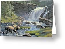 Moose Falls Greeting Card by Paul Krapf