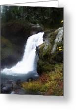 Moose Falls Greeting Card