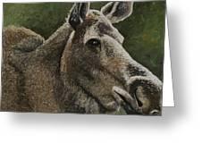 Moose II Greeting Card