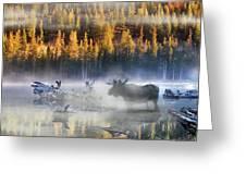 Moose Lake Greeting Card