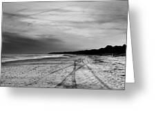 More Beach Tracks Greeting Card