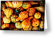 More Beautiful Gourds - Heralds Of Fall Greeting Card