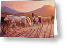 More Than Light Arizona Sunset And Wild Horses Greeting Card