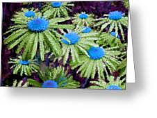 More Than Miles Purple Green Blue Greeting Card