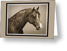 Morgan Horse Old Photo Fx Greeting Card