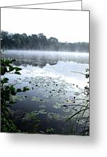 Morning At Lake Greeting Card by Willo Breisacher