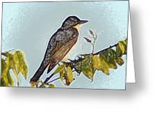 Morning Bird Greeting Card