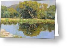 Morning Calm In Texas Summer Greeting Card