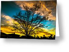 Morning Colors Greeting Card