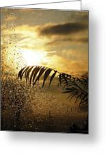 Morning Dew Screen Greeting Card