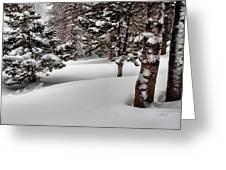 Morning Drifts Greeting Card