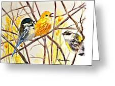 Morning Friends Greeting Card