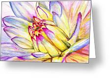 Morning Flower Greeting Card