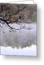 Morning Fog Over Lake Greeting Card